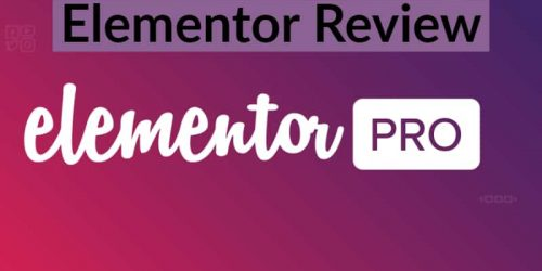 Elementor Review